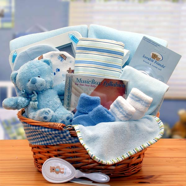 a639a1bd6f8ec Simply The Baby Basics New Baby Gift Basket- Blue