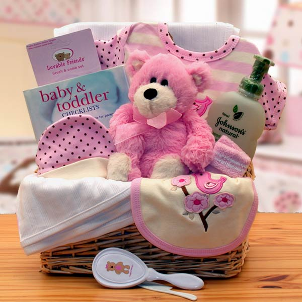 Gifts for baby american gifts baskets solutioingenieria Choice Image